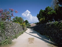 沖縄の集落の道